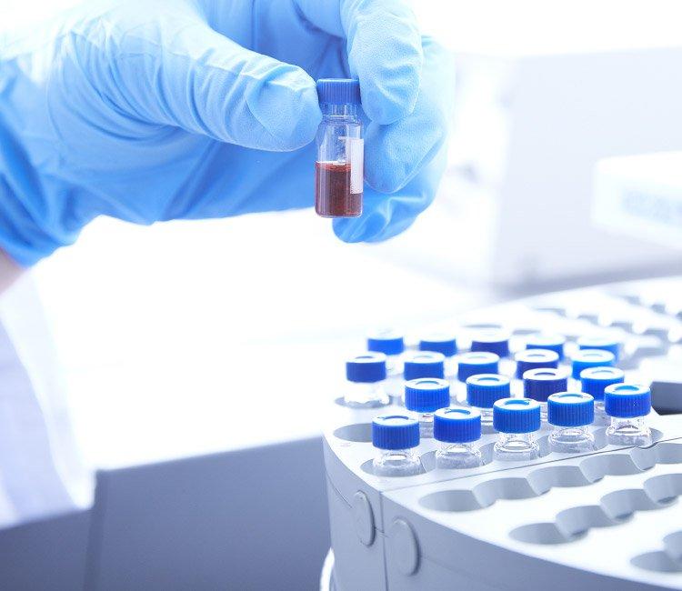 YAEGAKI Biotechnology Functional Food Ingredients