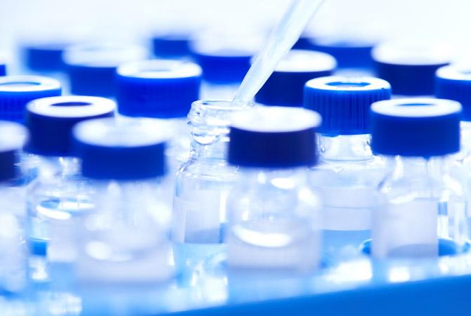 YAEGAKI Biotechnology Research theme: immune health ingredients