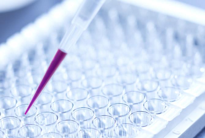 YAEGAKI Biotechnology Pharmaceutical intermediates