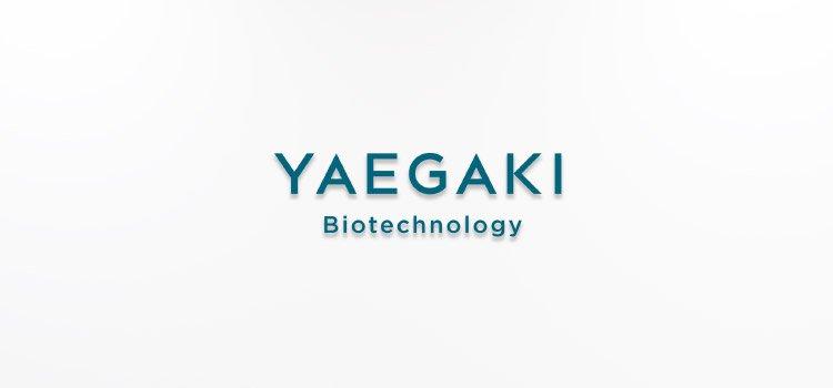 YAEGAKI Biotechnology Corporate information