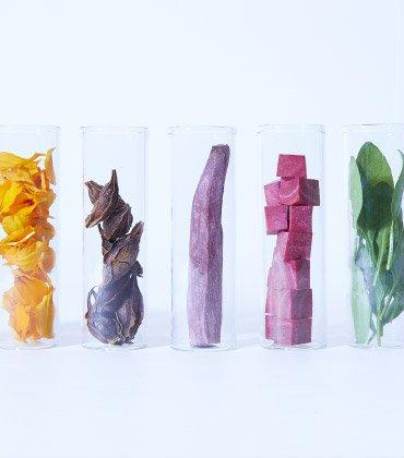 ヤヱガキ醗酵技研 YAEGAKI Biotechnology 食品用着色料 研究開発