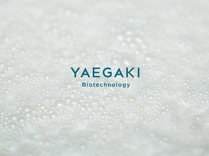 ヤヱガキ醗酵技研 YAEGAKI Biotechnology ヤヱガキ醗酵技研株式会社