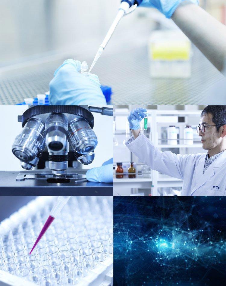 ヤヱガキ醗酵技研 YAEGAKI Biotechnology 発酵 バイオテクノロジー